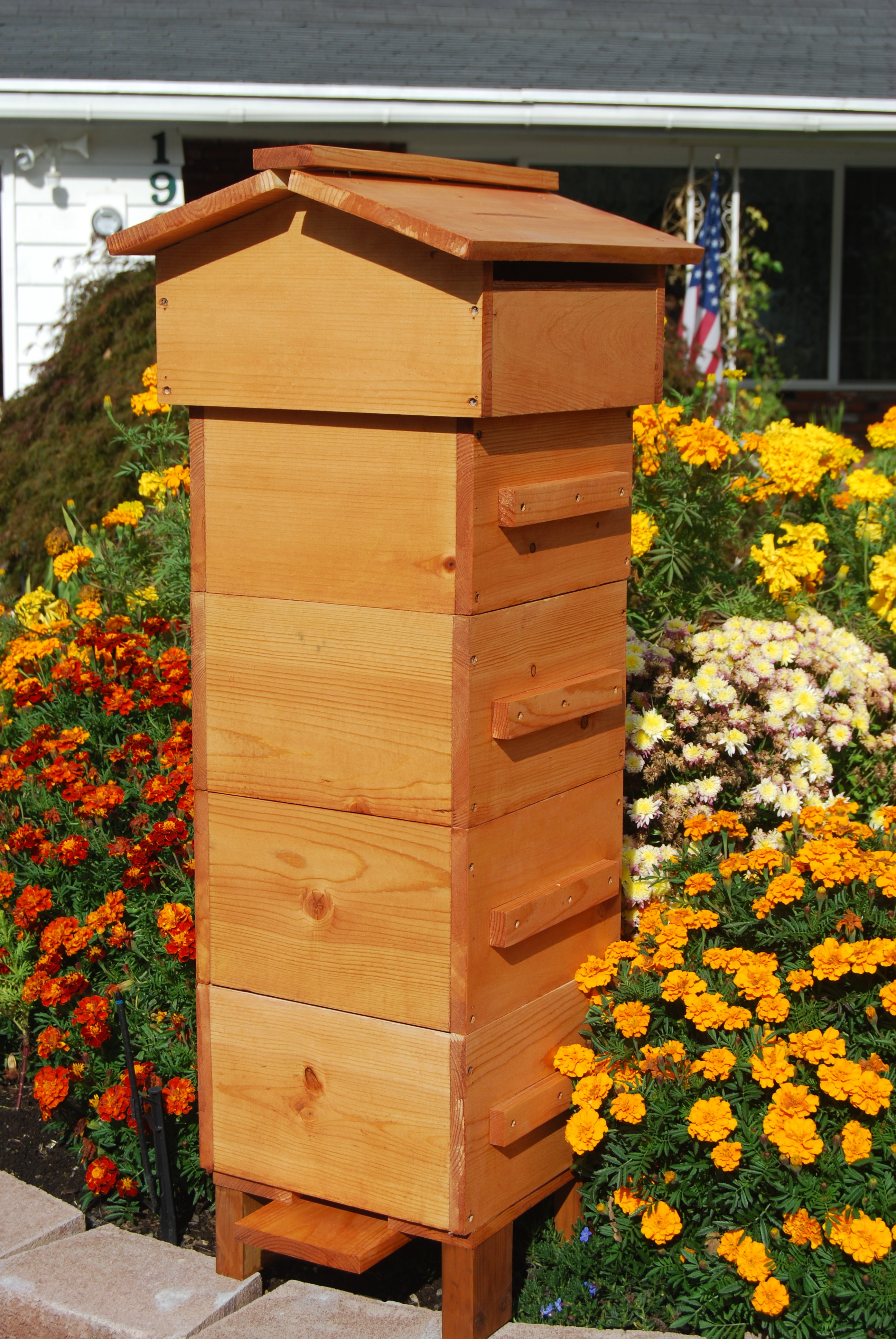 how to get rid of bee hives on your house