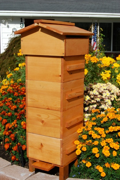 Warré Bee Hive