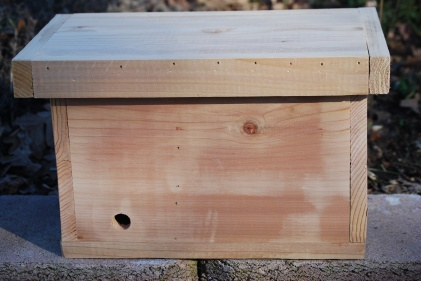 Bumblebee Nest Box