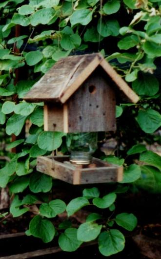 fgb_bird-feeder